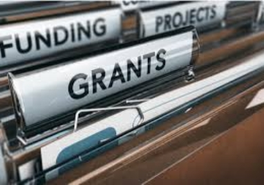 Local Restrictions Support Grants